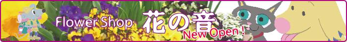 Flower Shop 花の音